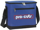 Custom 12 Can Cooler Bag, 600 Denier Polyester With Pvc Backing