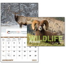 Good Value Calendars Custom 7563 Wildlife Portraits - Window Calendar, Digital