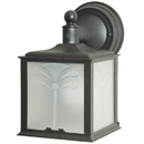 Sunlite 48224-SU Decorative Outdoor Energy Saving Orchid Down Fixture, Black Finish, Frosted Lens