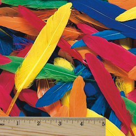 Duck Quill Feathers, 14grams (pk/100), Price/per pack