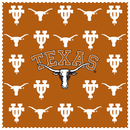 Siskiyou Buckle CSCC22 Texas Longhorns Microfiber Cleaning Cloth