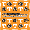 Siskiyou Buckle CSCC25 Tennessee Volunteers Microfiber Cleaning Cloth