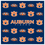 Siskiyou CSCC42 Auburn Sunglass Microfiber Cleaning Cloth