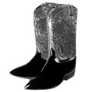 Siskiyou Buckle PN2003E Collector Pin - Cowboy Boots
