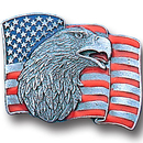 Siskiyou Buckle PN2015E Collector Pin - Flag & Eagle