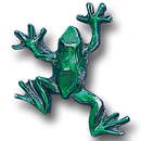 Siskiyou Buckle PN3009E Collector Pin - Frog