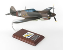 Toys and Models AP40AVTS P-40E Warhawk, 1/24 scale model