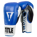 TITLE Boxing GRPFG Great Official Pro Fight Gloves