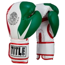 TITLE Boxing HIFXTG Infused Foam El Combate Mexico Training Gloves