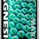 Magnesion Liquid Magnesium 8.5oz 250ml