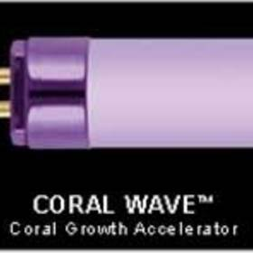 "Wavepoint Coral Wave 24w 21"" Ho T5 Coral Growth Lamp"