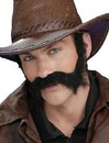 Forum Novelties Civil War General Brown Moustache & Beard Costume Set