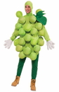 Forum Novelties Green Grapes Adult Costume One Size Fits Most