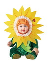 Incharacter Silly Sunflower Costume Infant