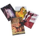 US TOY 1234 Horse Memo Pads