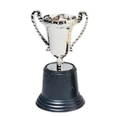 US TOY 5004 Silver Trophies