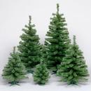 "Vickerman C812894 24"" Canadian Pine Tree 58T Plastic Stand"