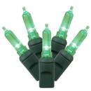 Vickerman X6G7504 50Lt LED Green/GW Italian EC 6