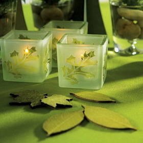 Weddingstar 9047 Deep Sandblasted Glass Leaf Cube Tea Light Holder - Frost and Green, Price/Packags of 8