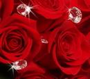 Elegance by Carbonneau BQ-101 Elegant Crystal Bouquet Jewels BQ 101 (Silver or Gold Clear) Set of 10