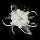 Elegance by Carbonneau Clip-2531 Rhinestone Feather Ribbon Fascinator Clip 2531 with Brooch Pin (White or Ivory)