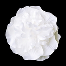 Elegance by Carbonneau clip-429-white Bridal Flower Hair Clip or Clip Brooch 429 White or Ivory