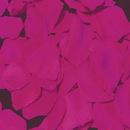 Elegance by Carbonneau Rose-Petals-Fuscia-119 Fuschia Rose Petals (100 Count) #119