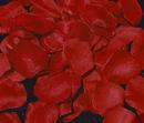 Elegance by Carbonneau Rose-Petals-Red Red Rose Petals (100 Count) #5