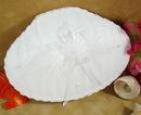 Elegance by Carbonneau RP-Shell-850 Shell Ring Bearer Bridal Pillow RP 850