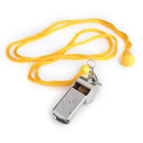 GOGO Brass Whistle, Referee Coach Whistle With Lanyard & Hook, Party Favors