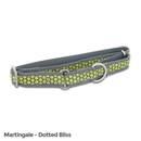 PetSafe Fido Finery Martingale Style Collar (Large, Dotted Bliss)