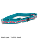 PetSafe Fido Finery Martingale Style Collar (Large, Teal My Heart)