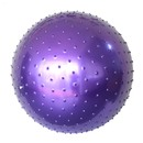 GOGO Massage Ball / Exercise Ball / Yoga Ball, Massage Ball (55cm, 65cm, 75cm, 85cm)