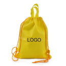 Customized 80G Non-woven Drawstring Backpack with Carry Handle, 16.5