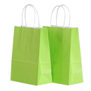 Blank Twisted Handle Paper Shopping Bags, 6