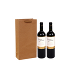 Blank Natural Kraft Paper Shopping Bags Double Wine Gift Bags, 6 7/10