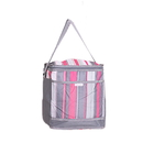 Stripe Insulated Lunch Bag with One Front Mesh Pocket, 10 1/2