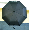 Blank Three-section Automatic Open Umbrella
