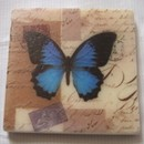 Custom Square Sandstone Coasters, 4