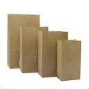 100 PCS Aspire Kraft Paper Grocery Bags