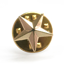 (Price/50 PCS) ALICE 3D Die Struck Star Pin, Golden,Silver, 3/8