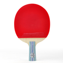 DHS Table Tennis Racket A5006, Ping Pong Paddle Penhold