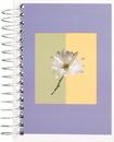 Mead Fat Lil' Fashion Wirebound Notebook (45396)