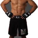 Advanced Graphics 1121 Junior dos Santos - UFC- 76
