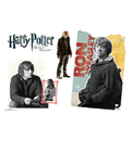 Advanced Graphics WJ1134 Ron Weasley Walljammer Harry Potter 7 - Wall Jammer