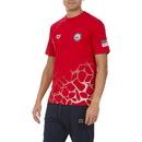 Arena 1D070 Usa Swimming T-Shirt