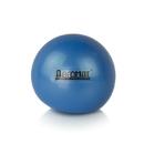 Aeromat 35914 5 LB Weight Ball - Blue