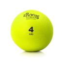 EcoWise 85103 Weight Ball, 4 lbs. - Kiwi