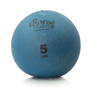 EcoWise 85104 Weight Ball, 5 lbs. - Blue Dahlia
