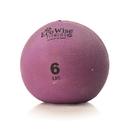 EcoWise 85105 Weight Ball, 6 lbs. - Iris